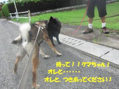 f0143123_20201677.jpg