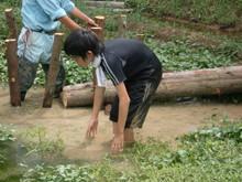 越前里地里山チャレンジ隊2010(その2)_e0061225_16553443.jpg