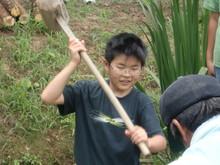 越前里地里山チャレンジ隊2010(その2)_e0061225_16563793.jpg