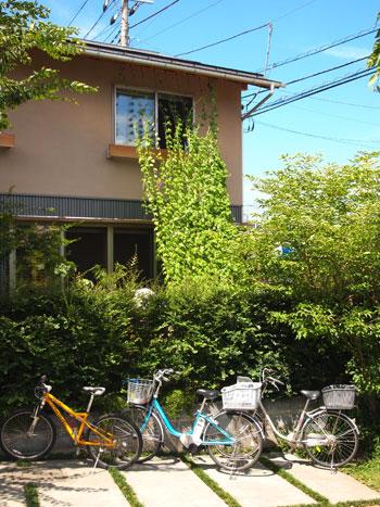 ソーラータウン西所沢の緑のカーテン_b0015157_23483299.jpg