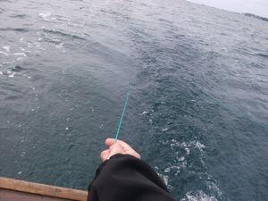 驚愕の大漁サバ釣りツアー体験記_e0030586_20254098.jpg