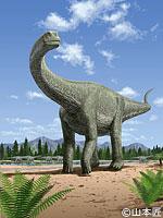 福井の恐竜を紹介#3 フクイティタン・ニッポネンシス_f0229508_952637.jpg