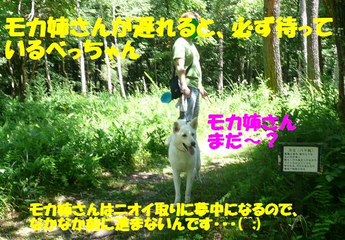 f0121712_12255262.jpg