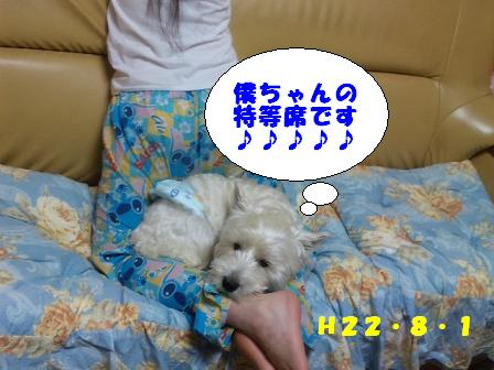 c0212637_1253612.jpg