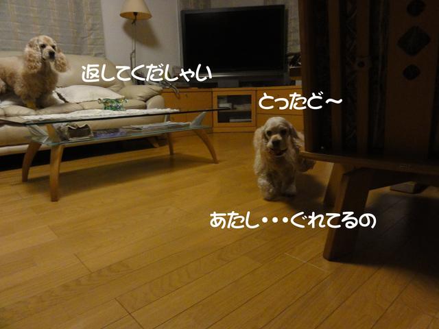 f0218182_10451380.jpg