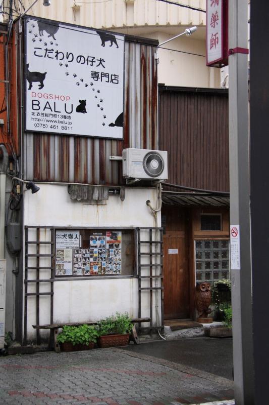 京都蛸薬師裏寺町角「Cafe犬猫人」_d0167436_7315115.jpg