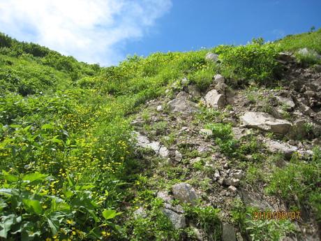 恒例の白山登山へ_e0121558_1245117.jpg