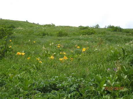 恒例の白山登山へ_e0121558_1251588.jpg