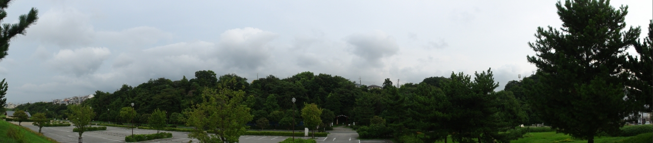 日本経済新聞社・・・ウミホタル観察会Ⅱ_c0108460_23574169.jpg