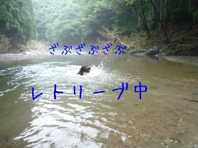 f0177261_1441237.jpg