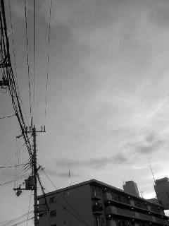 f0100480_19393675.jpg