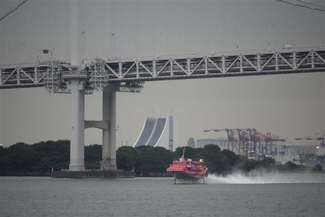 竹芝桟橋から見るレインボーブリッジ_b0175688_12142477.jpg