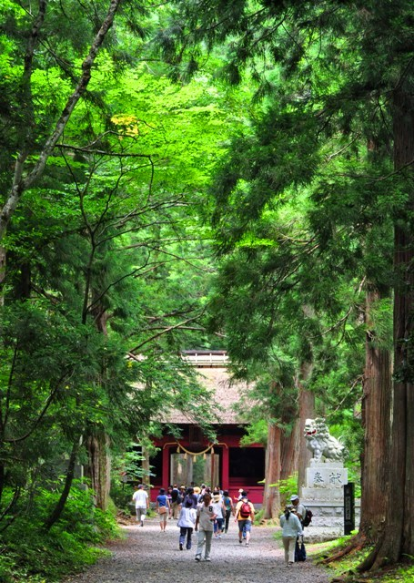 戸隠でキャンプ!!3日目_a0126590_57348.jpg