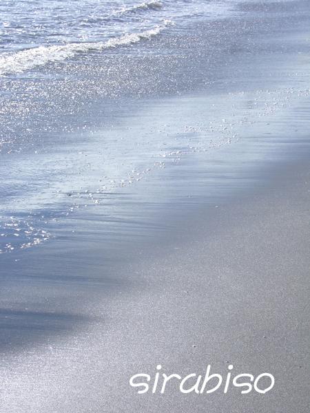 母なる海へ_e0142993_0571130.jpg