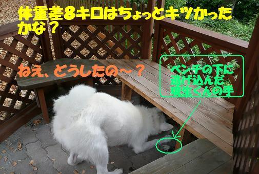 f0121712_15493612.jpg