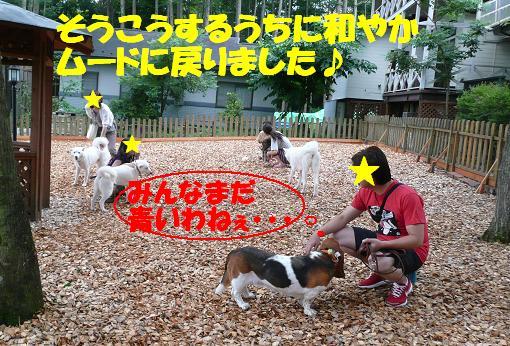 f0121712_16301977.jpg