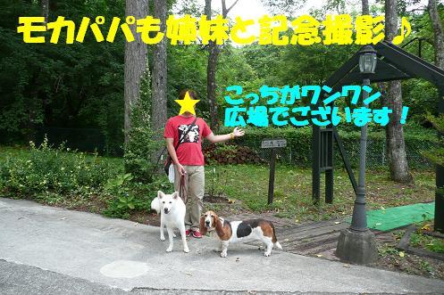 f0121712_2224725.jpg