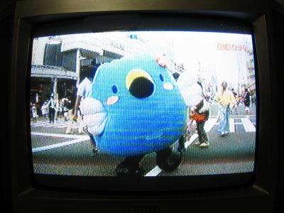 テレビと消防署_f0182936_22333050.jpg