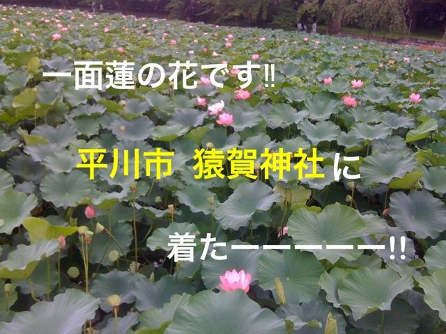 f0168374_1395728.jpg