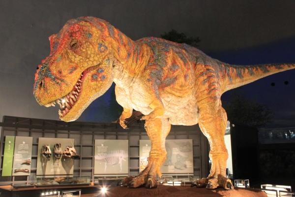 恐竜図鑑#4 ティラノサウルス・レックス_f0229508_10513226.jpg