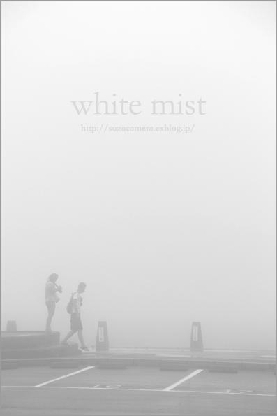 真っ白い霧_f0100215_23362312.jpg