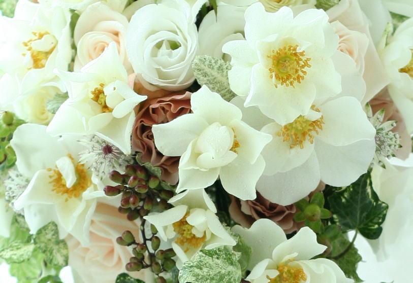 花の価格 一会の場合_a0042928_2258366.jpg