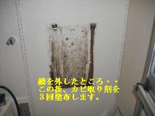 f0031037_22503831.jpg