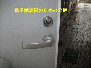 f0031037_22515321.jpg
