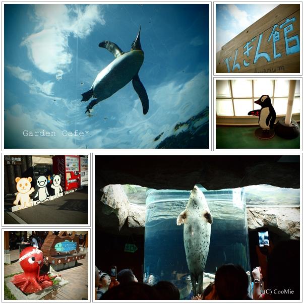 旭山動物園♪_a0097840_0353718.jpg