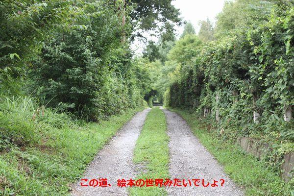 b0148945_2162676.jpg