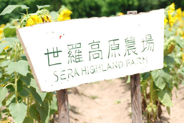 世羅高原農場_b0146751_821575.jpg