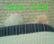 c0052756_23585651.jpg