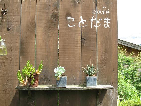 奈良旅行日記。_d0128268_8201212.jpg