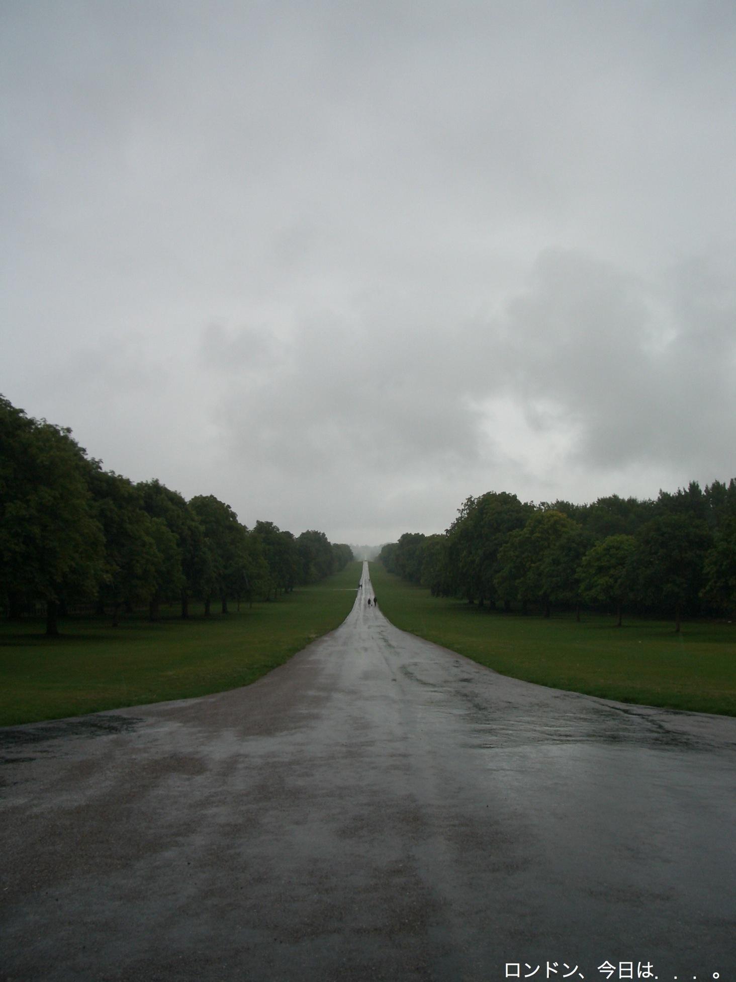 雨の中のWindsor_a0137487_1134076.jpg