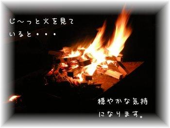 f0205887_2054710.jpg