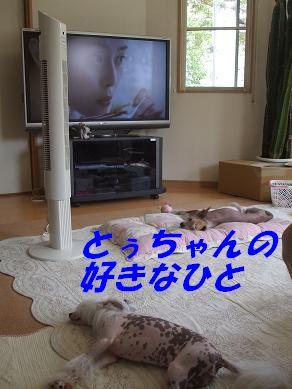 f0179203_782714.jpg