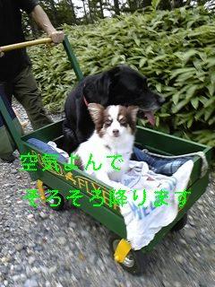 f0148927_19233649.jpg