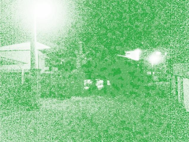 f0100750_311597.jpg
