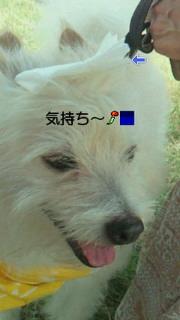 f0192863_13514348.jpg
