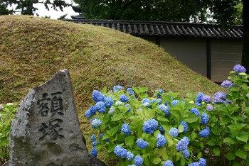 興福寺 文化財 (三)_a0045381_647857.jpg