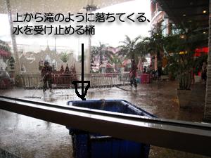 パトンに行ったら大雨だった・・・_f0144385_185728.jpg