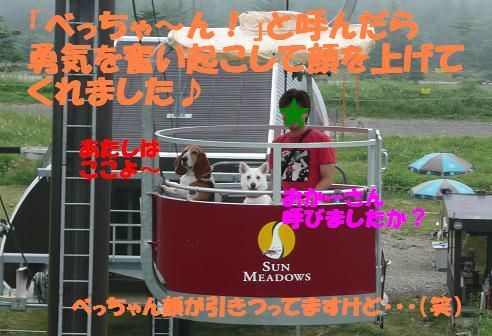 f0121712_21183781.jpg