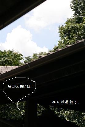 b0156928_1939990.jpg