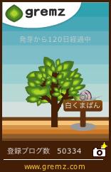 f0213232_11165570.jpg