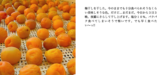 f0220343_16283472.jpg