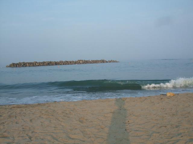オークリーフ(初めての海水浴)_f0049672_15162073.jpg
