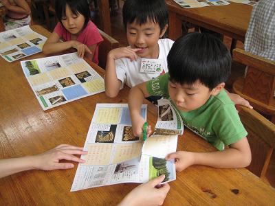 飫肥杉で子ども達キラキラ_f0138874_18261091.jpg