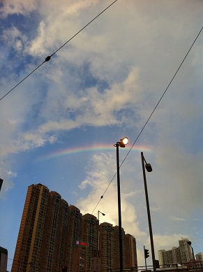 Rainbow_d0088196_0505877.jpg