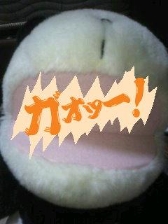 f0033598_0571514.jpg