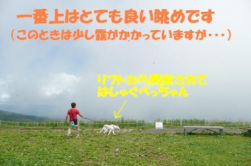 f0121712_8104842.jpg